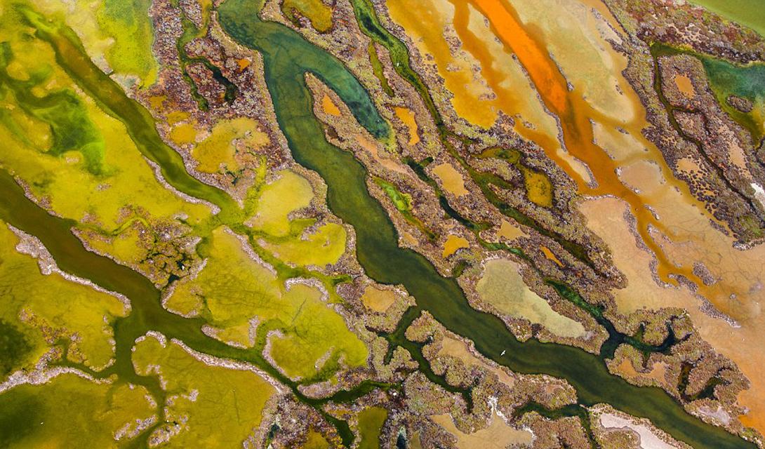 The art of algae Категория: снимок с небаАвтор: Пер Солер Залив Лас Кадис, природный парк на берегу Андалусии, Испания, представляет собой мозаику из болота, зарослей тростника, песчаных дюн и пляжей. Это место привлекает большое количество птиц, а весной становится важной точкой миграционного маршрута.