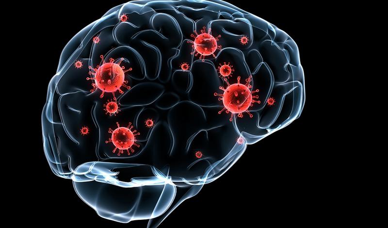 Тренировка памяти Большая часть страха кроется в глубинах нашей памяти. Разум услужливо держит негативный опыт на ближних полках сознания — это обусловлено первобытными инстинктами, когда человек пользовался страхом, чтобы не попадать в одну и ту же ловушку. Современный человек может избавиться от страха довольно простым путем: стараясь как можно реже вспоминать о пугающих его событиях. Пусть призыв к позитивному мышлению и может показаться несколько наивным, однако, этот способ действительно может сработать.