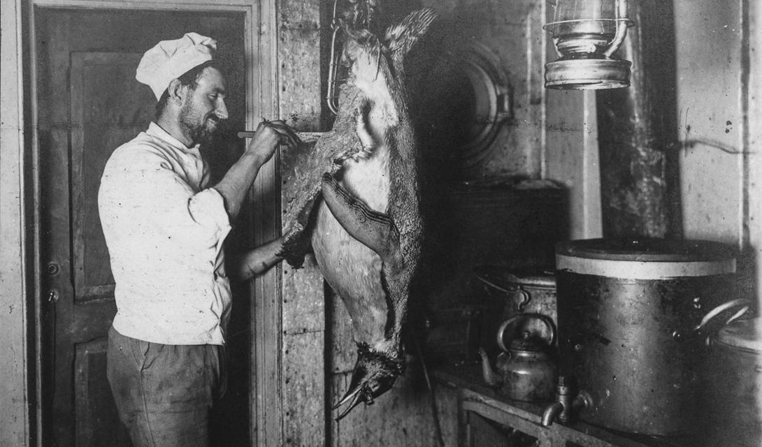 Чарльз Грин, повар, готовит на обед пингвина.