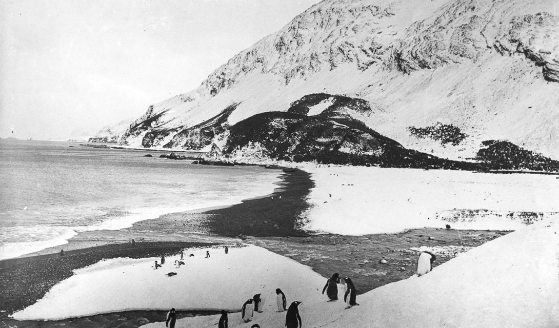 Пляж Слоновьего острова, где был обустроен походный лагерь экспедиции.