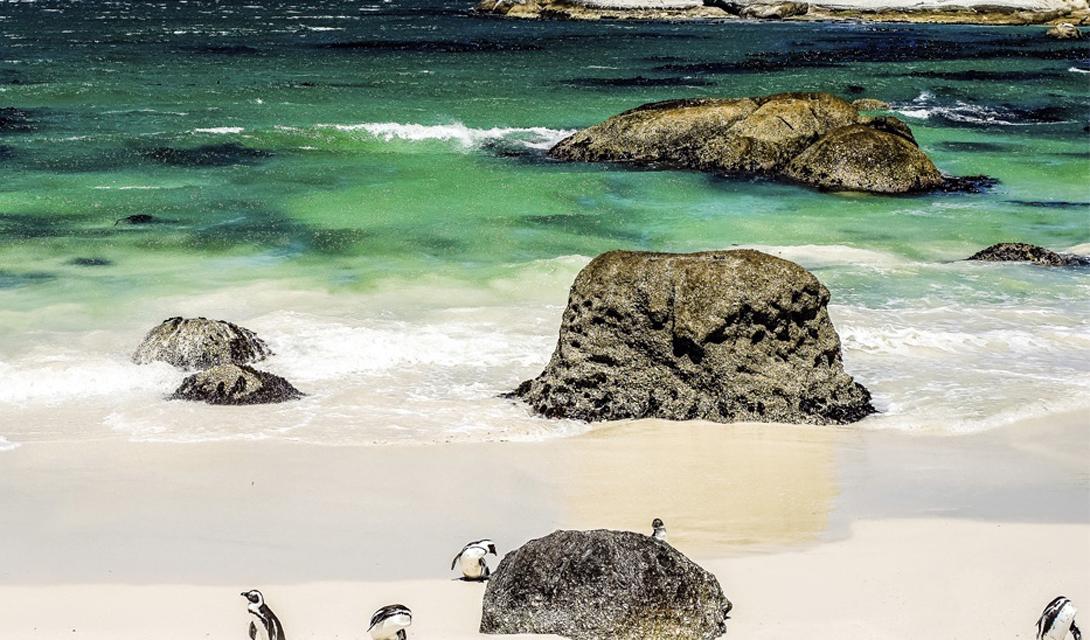 Южная Африка Водопад Виктория, мыс Вайнлендс, сам Кейптаун: Южная Африка — чуть ли не лучшее место для путешественника, желающего за одну поездку получить как можно больше впечатлений.