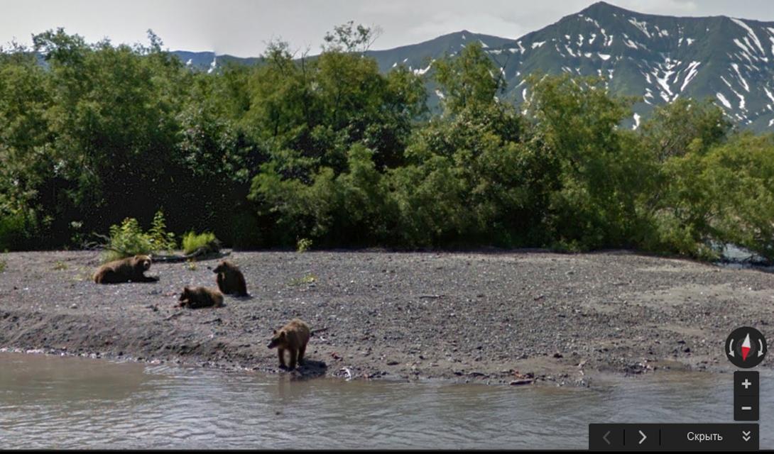 Курильское озеро, кордон «Травяной». Здесь любой желающий может посмотреть на медведей в естественной среде обитания.