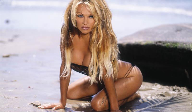 Памела Андерсон Одна из самых странных фобий нашего листинга: Памела Андерсон боится зеркал. Вы не ошиблись, секс-символ 90-х годов и главная звезда «Спасателей Малибу» живет в домах без зеркал и отказывается смотреть на себя по телевизору. Да, девушка явно выбрала не ту профессию.