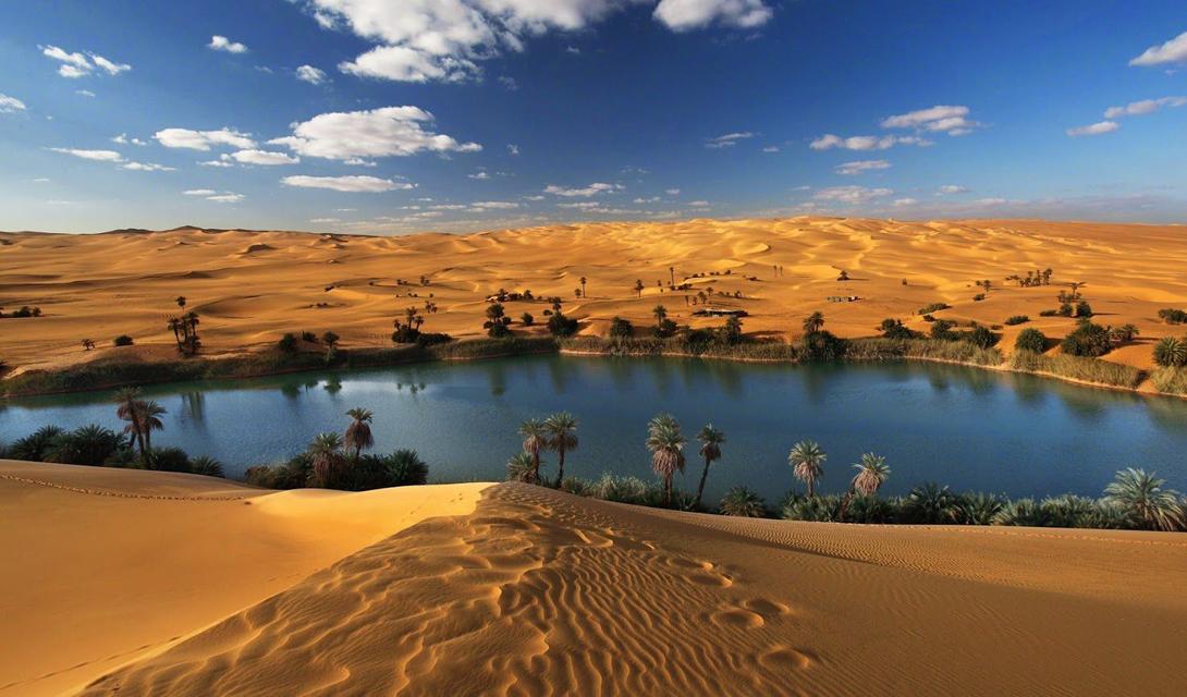 Французские исследователи выявили древние речные каналы: они считают, что пустыня поддерживала существование огромного количества живых организмов.