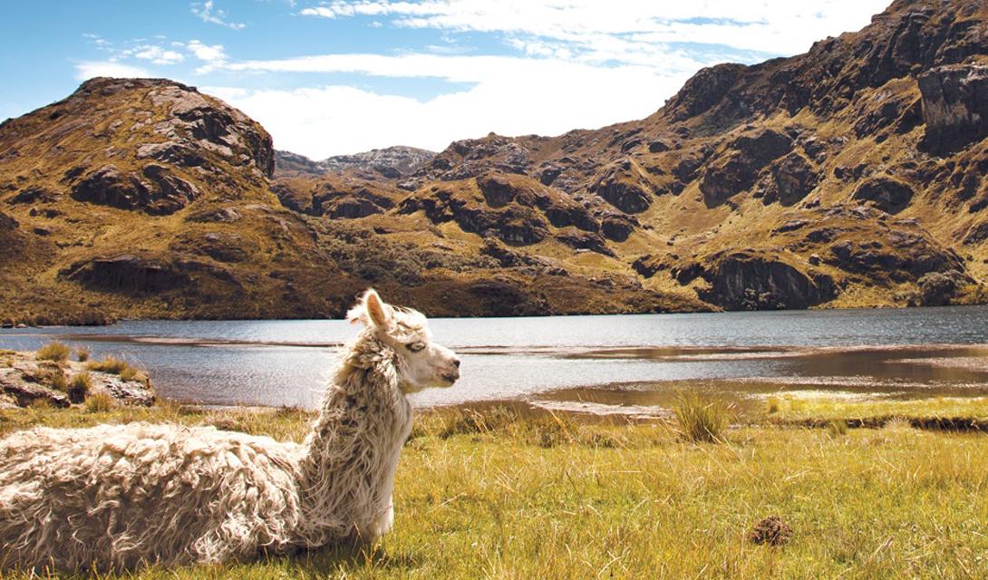 Эквадор Колониальное очарование Эквадора способно кого угодно превратить в ярого фаната этой страны. Здесь мистические верования до сих пор вплетаются в повседневную жизнь, ничуть не мешая туристам наслаждаться завораживающим путешествием вглубь таинственной сказки.