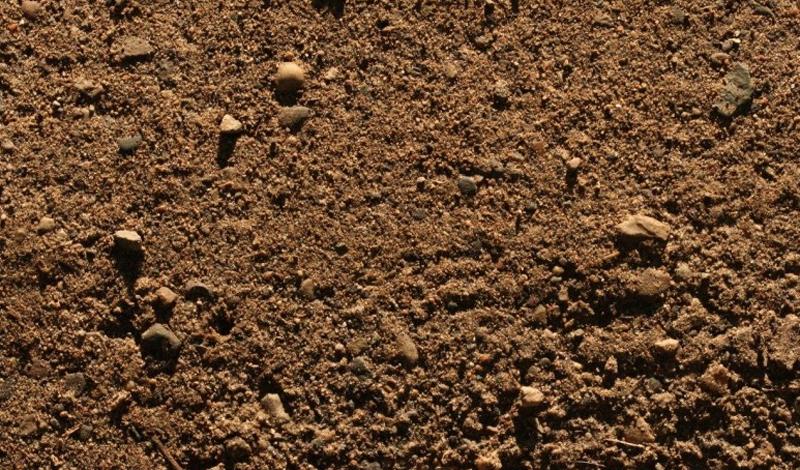 Грязь По счастью, аддиктивность к грязи замечена только в одном месте планеты. Гаитянцы с удовольствием добавляют грязь во многие блюда и даже пекут целые грязевые пироги — совсем как дети, право слово.