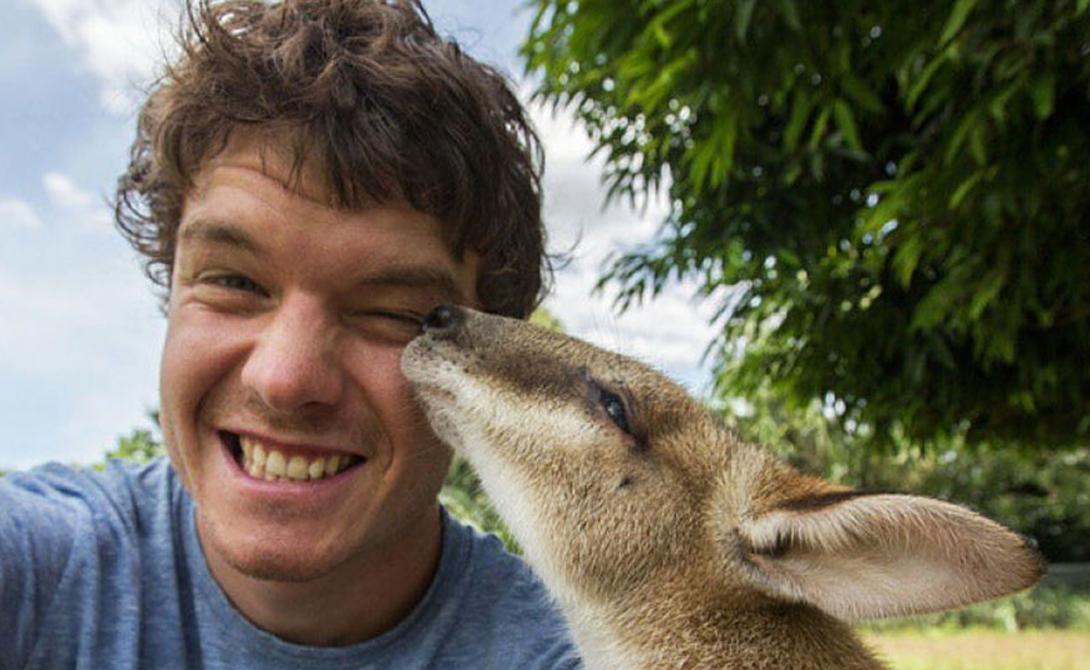 В одном из своих многочисленных интервью Диксон признавался, что животные находят его сами — в любом месте. Если у хозяина дома, где гостит ирландец, есть питомец — он обязательно придет к фотографу.