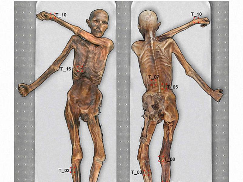 Несмотря на несколько маргинальное восприятие татуировки многими социальными слоями, ученые всего мира с удовольствием посвящают этому искусству целые работы. Совсем недавно определился владелец старейшей татуировки в мире: им стал Эци, возраст которого оценивается экспертами в 5 300 лет.