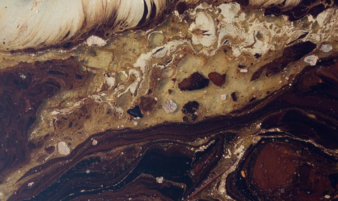 Нефть из скважины Deepwater Horizon разлилась на мелководье Ист-Гранд-Терр, штат Луизиана. Прошло почти два месяца после аварии.