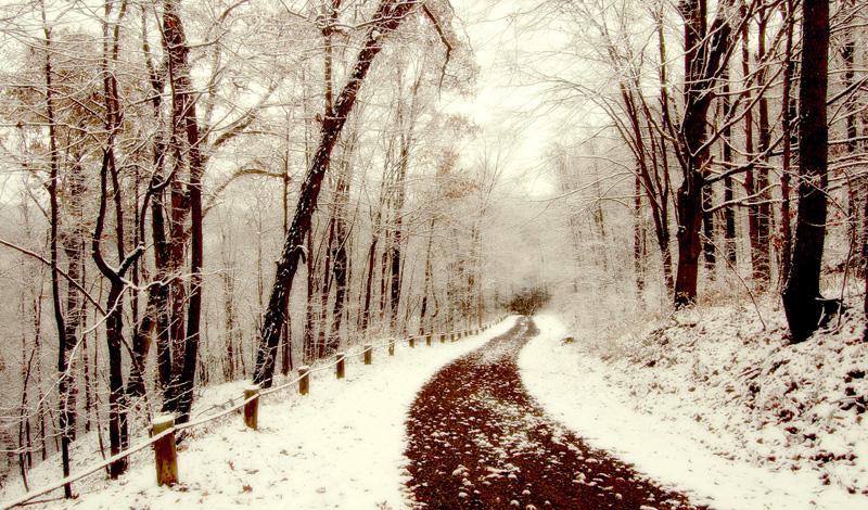 Прогулки под снегом На самом деле, ждать снегопада совсем не обязательно. А вот бороться с постоянным желанием забиться в свою пещеру, обнять любимую приставку и не видеть никого до самого лета — важно. В одиночестве уровень стресса подскакивает до максимальных показателей. Ситуацию осложняет пониженный уровень кислорода — откуда ему взяться в закупоренной напрочь «пещере».
