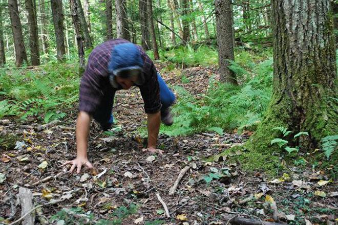 Медвежий лаз Призовите на помощь вашего духовного наставника (пусть сегодня им станет медведь), чтобы выполнить одно из разминочных упражнений. Встаньте на четвереньки, так, чтобы колени не касались земли. Найдите невысокий холм и поднимитесь на него, оставаясь в таком положении. Теперь спуститесь. Тело, вынужденное сохранять необычный баланс, напряжет все мышцы — этого-то нам и надо.