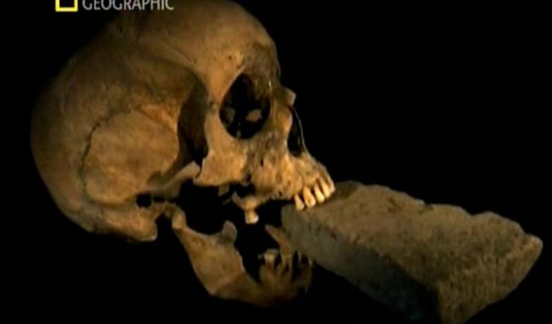 Венецианский вампир Вся Европа боролась с вампирами одобренными сверху методами — кол в грудь, и вся недолга. И только ребята из Венеции проявили чудеса смекалки: они нейтрализовали кровососов, заливая им в челюсти цемент. Шутки шутками, но некоторые из найденных археологами черепов и в самом деле имели неестественно удлиненные зубы, кончиками вросшими в камень.