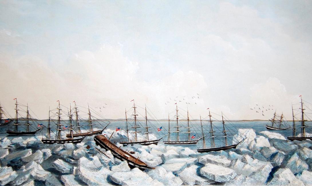 История самой трагедии 2 сентября 1871 года более 1200 китобоев флотилии из 33 судов застряли в Северном Ледовитом океане. Зажатые паковыми льдами корабли были уничтожены в считанные недели. По счастью, почти половина экипажа спаслась: на помощь пришли китобои со всей окрестности. Ошибка в судовых картах привела к небольшой путанице — моряки указали район, более близкий к освоенным водам, поэтому и не удостоились внимания ученых того времени.