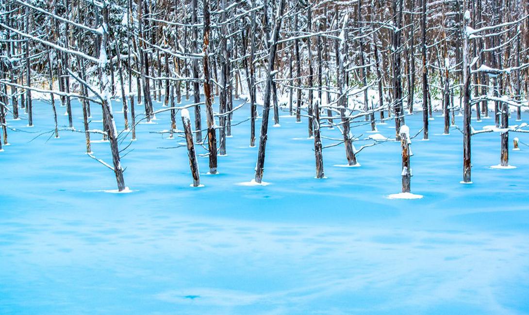 Голубой пруд Хоккайдо, Япония Японский остров Хоккайдо выглядит настоящим постером со стены в комнате ребенка, с самого детства очарованного красотой окружающего мира. Вулканы, девственные национальные парки и, конечно же, озера — самым известным из которых является знаменитый Голубой пруд.