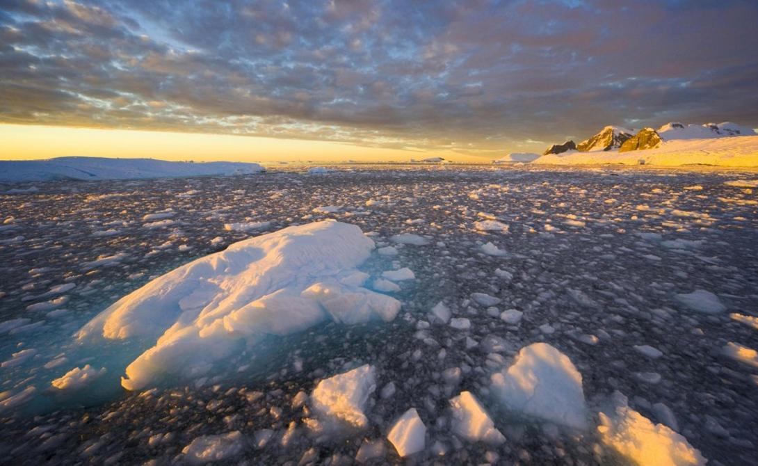 Антарктида является пятым по величине континентом мира.