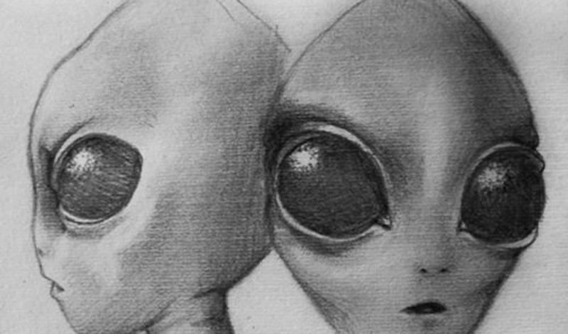 Сассани Считается, что эта раса может быть прародителем всего человечества. Многочисленные сторонники теории о внеземном разуме утверждают, что люди — гибриды сассани и земной фауны. В отличие от тех же Серых, Сассани раса благожелательная. Они стараются пробудить высший разум человечества, чтобы мы могли вступить в космический альянс.