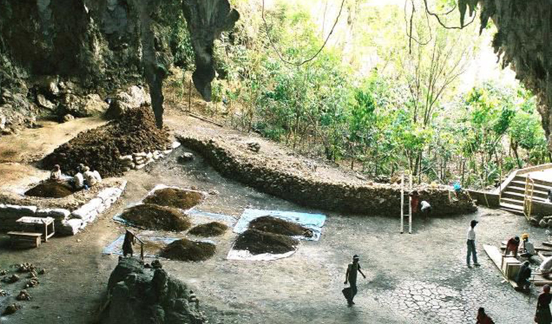 На странные останки наткнулась команда австралийского геолога Майкла Гэгэна. Произошло это практически случайно: Майкл, решив обойти всю пещеру, обнаружил узкий проход, который привел его в новый грот.