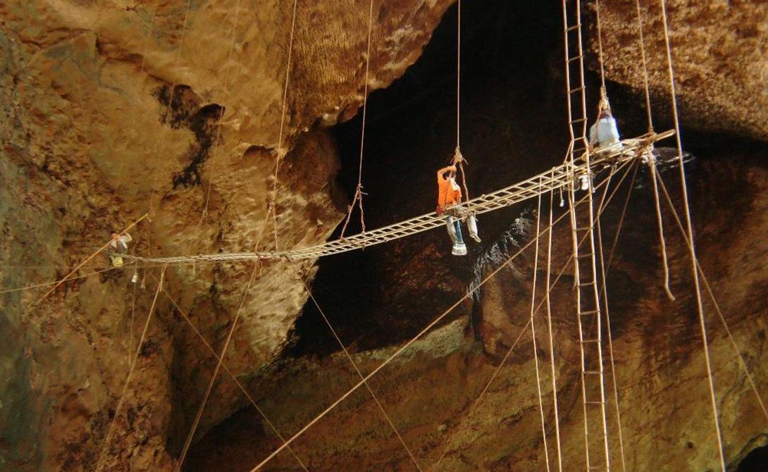 Расположенные на холме Гомантонг, что в центре национального парка Департамента лесного хозяйства Сабах, пещеры прославились еще в средние века. В мрачных глубинах поселились саланганы, чьи гнезда употребляли в пищу китайские вельможи.