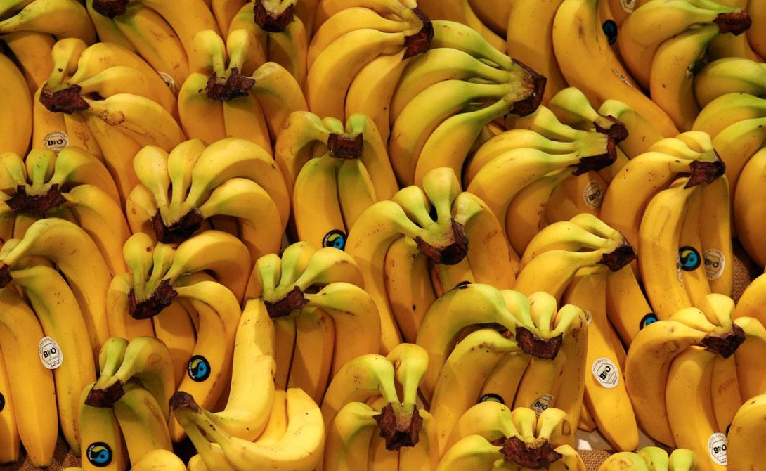 Это Gros Michel — в США сорт зовется «Большой Майк». Бананы оставались экзотическим лакомством вплоть до конца 1800 года, когда United Fruit Company буквально наводнила рынки Соединенных Штатов этим продуктом.
