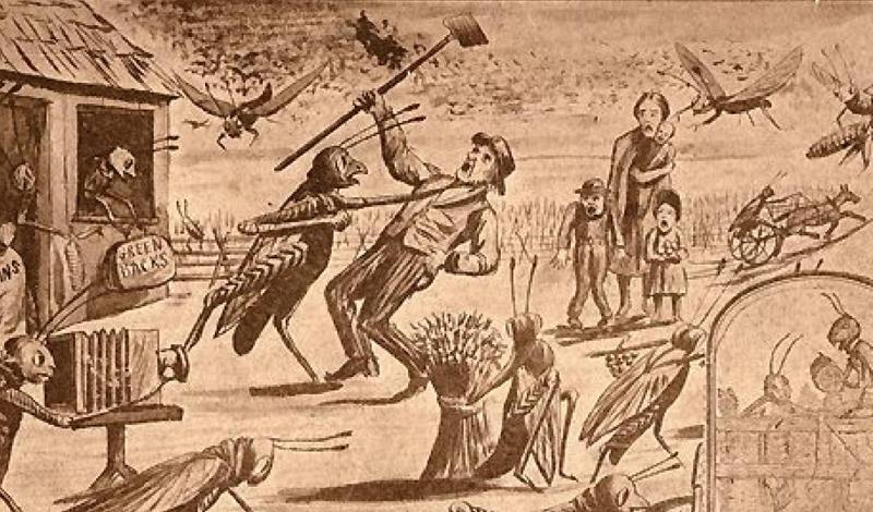 Год саранчи Сухая весна 1874 года была очень благоприятна для саранчи, отложившей триллионы яиц в прериях у Скалистых гор. Летом все это полчище вылупилось и уничтожило все, что росло в Небраске, Канзасе, Дакоте и Айове.