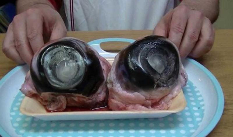 Глаз тунца Япония Удивительно (на самом деле — нет), но для японца это обычное блюдо. Гигантские глазные яблоки тунца продаются в любом магазине. Может быть, блюдо и обладает определенным шармом, но мы бы его пробовать не рискнули.