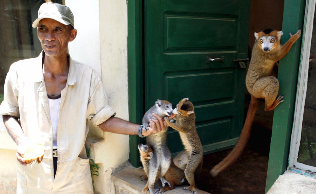 Антананариву Мадагаскар Политическая нестабильность поставила Антананариву в осадное положение. Местным жителям просто некуда бежать — отсюда постоянные уличные бои и мародерство.