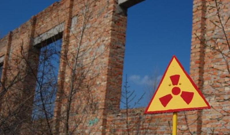 Исследование Greenpeace наглядно показало всему миру черную тень катастрофы на Чернобыльской АЭС. Риск использовать ядерные реакторы как источник энергии очень велик и человек, по крайней мере — пока, еще не в состоянии его купировать.