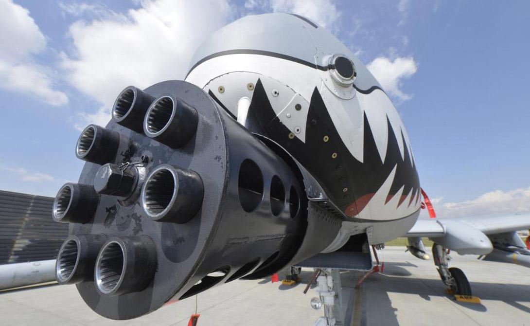 На А-10 Thunderbolt II была установлена семиствольная пушка GAU-81A, калибр 30-мм, скорострельностью 2400 выстр/мин. На 11 внешних узлах устанавливались кассетные боеприпасы и свободно падающие снаряды. Кроме того, «Бородавочники» были оснащены и управляемыми ракетами AGM-65A. Для защиты от самолетов противника использовались ракеты класса воздух-воздух АIM-9 «Сайдвиндер» — то есть, охота на такого кабана-бородавочника была делом весьма и весьма опасным.