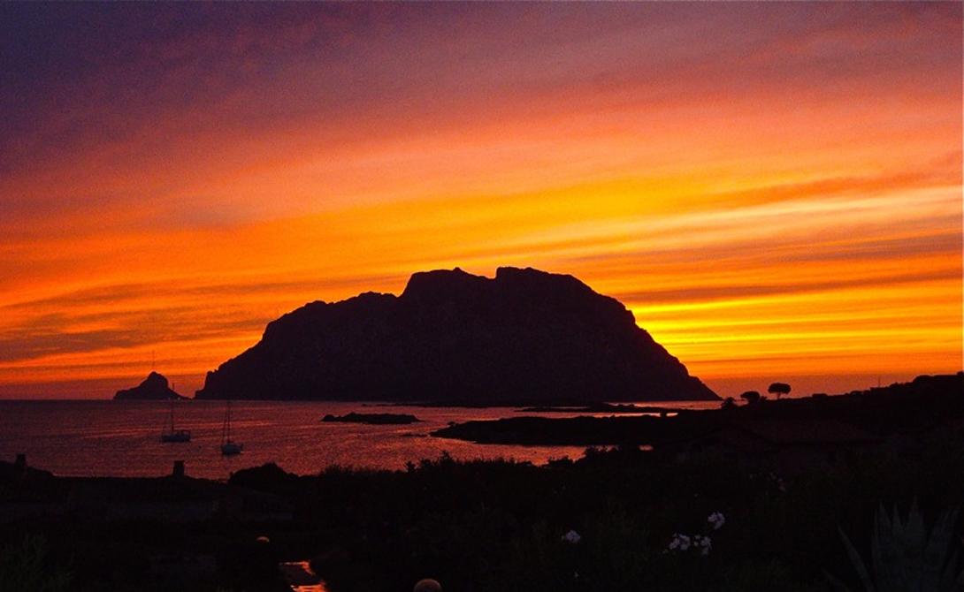 Обжив немного остров, Джузеппе объявил себя королем. Позднее генуэзец утверждал, что титул ему даровал сама Карло Альберто, король Сардинии, прибывший на Таволару поохотиться.