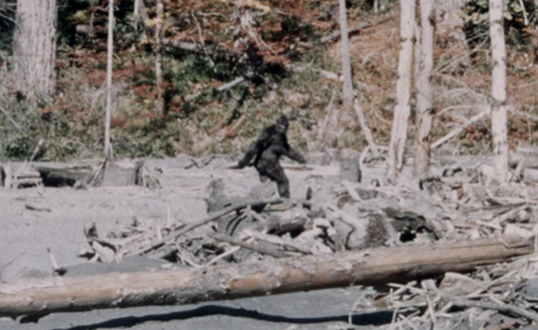 Йети Легендарное создание, которое видели многие охотники в горах. Йети, бигфут, снежный человек — что это? Пропущенная ступень эволюции? Мираж?