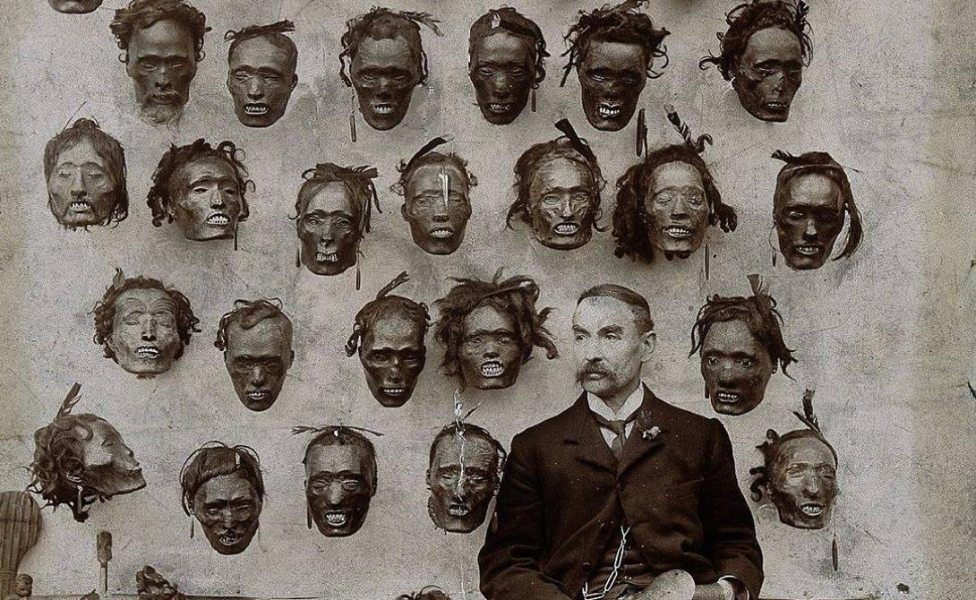 Коллекционеры В Европе и Северной Америке головы ценились очень высоко. Богатеи собирали на стенах своих гостиных целые частные коллекции тсанса, музеи же соревновались между собой за самую одиозную покупку. Никто и не принимал во внимание, что речь идет о коллекционировании сушеных человеческих голов —все как-то не до того было.