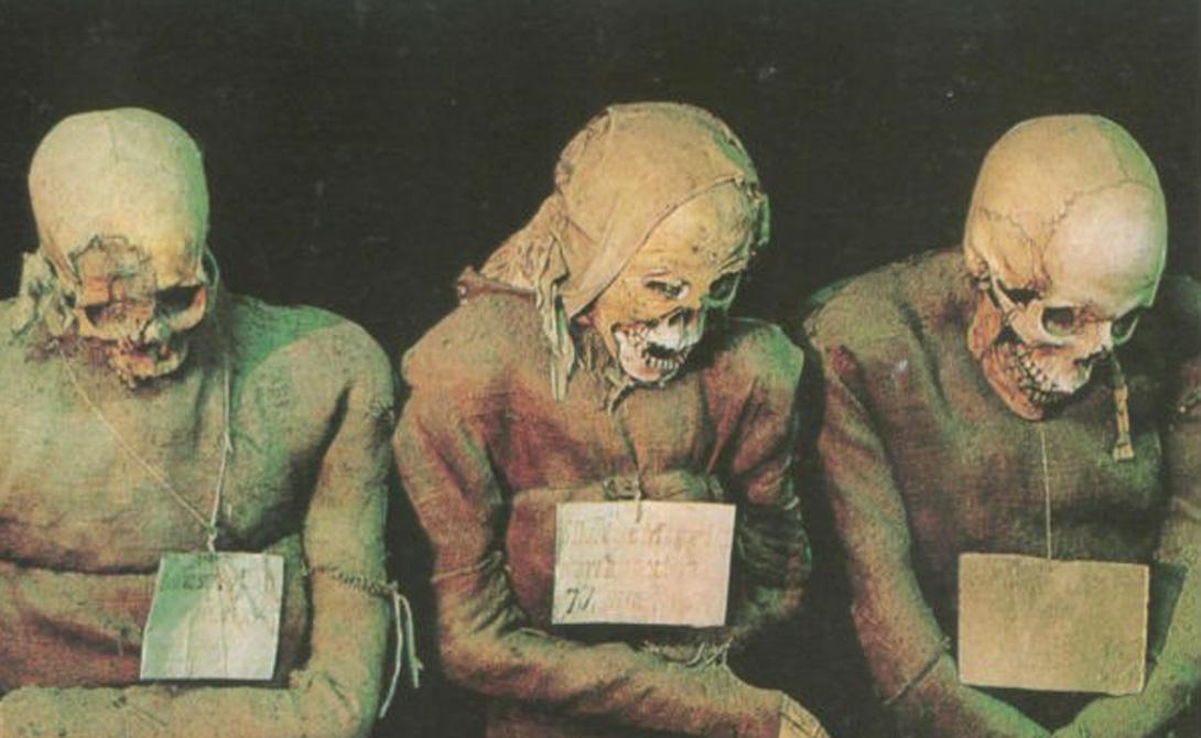 Мумия — тело человека или животного, которое было подвергнуто специальной, очень неаппетитной обработке. Внутренние органы удалялись, все промывалось содой и смолой и укутывалось пропитанными воском бинтами.