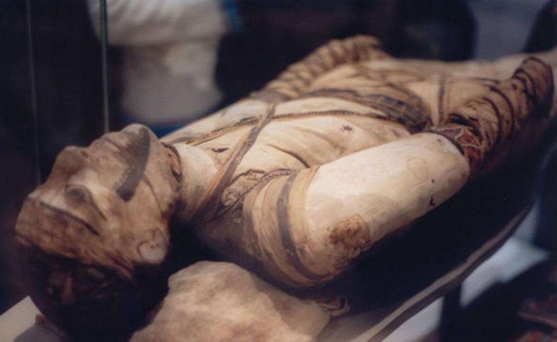 Многие люди ошибочно полагают, что мумификации подвергались только фараоны. На самом деле, процедуру мог заказать каждый, кто обладал хорошим достатком.