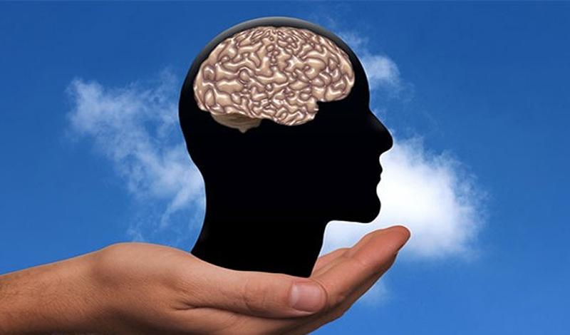Мы прекрасно запоминаем все печальные или страшные моменты жизни — хорошие же зачастую быстро забываются. Дело в том, что наша миндалина при стрессе высвобождает адреналин и кортизол, временно улучшая память. По идее, это помогает человеку держаться подальше от неприятностей — на практике же, дарит нам лишние бессонные ночи.