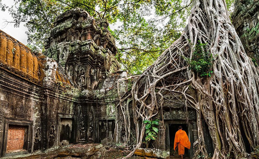 Храм Та Пром, расположенный в Ангкор, Камбоджа, обеспечит путешественнику невероятно увлекательное зрелище. Огромные корни деревьев проросли сквозь постройку, сформировав собственную архитектуру.