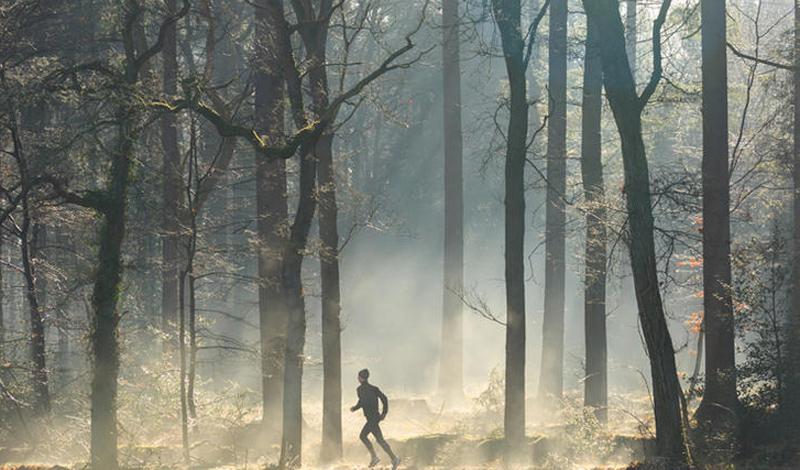 Утренняя пробежка Аллергенная пыльца, как правило, насыщает воздух до полудня. Если ваши тренировки приходятся на утро — лучше перенести их. Кроме того, убедитесь в том, что чистите кроссовки после каждой пробежки, ведь пыльца может осесть и на них тоже.