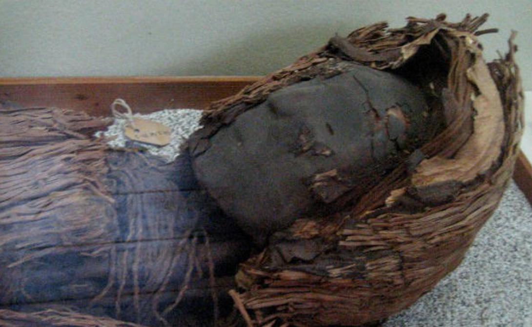 На самом деле, первые мумии делали не египтяне. Южно-американское племя чинчорро мумифицировало погибших еще семь тысяч лет назад. Причем процедуре подвергались как уважаемые члены самого племени, так и враги — последних пытались мумифицировать прижизненно, вливая в их тела специальные растворы.