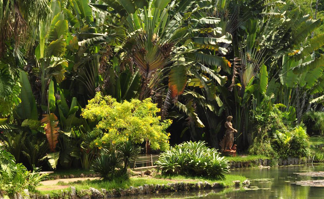 Национальный парк Тижука Крупнейший тропический лес в мире. Водопады, экзотические животные, деревья, которых больше не увидишь нигде на свете. Туристические маршруты по этому парку — лучшее место для долгого, вдумчивого самоанализа.