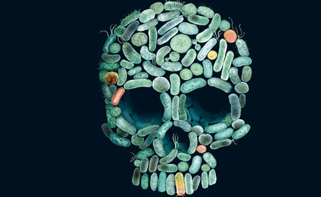По счастью, ситуация начинает изменяться. Очень медленно, но люди осознают, насколько опасно ставить деньги выше здоровья. Последние эпидемии (Зика в Бразилии, оспа в Европе, туберкулез на Борнео) ясно продемонстрировали: человечество до сих пор остается в шаге от гибели. На данный момент целый ряд западных стран формирует государственные медицинские программы по борьбе с наиболее опасными болезнями. ВИЧ, гепатит, малярия — врачебные махинации постепенно уходят в прошлое.