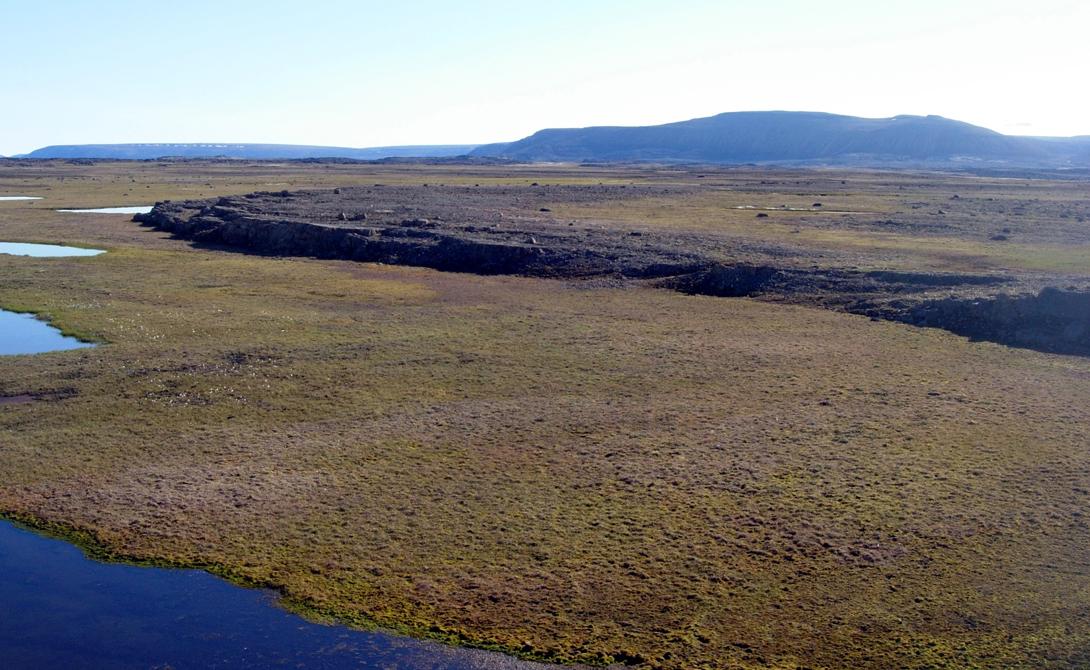 Удивительно, но сейчас на острове сохраняется некое подобие жизни. Плато Трулав, на северо-восточном побережье, отличается относительно теплой и влажной погодой. Летом здесь появляется кое-какая растительность.