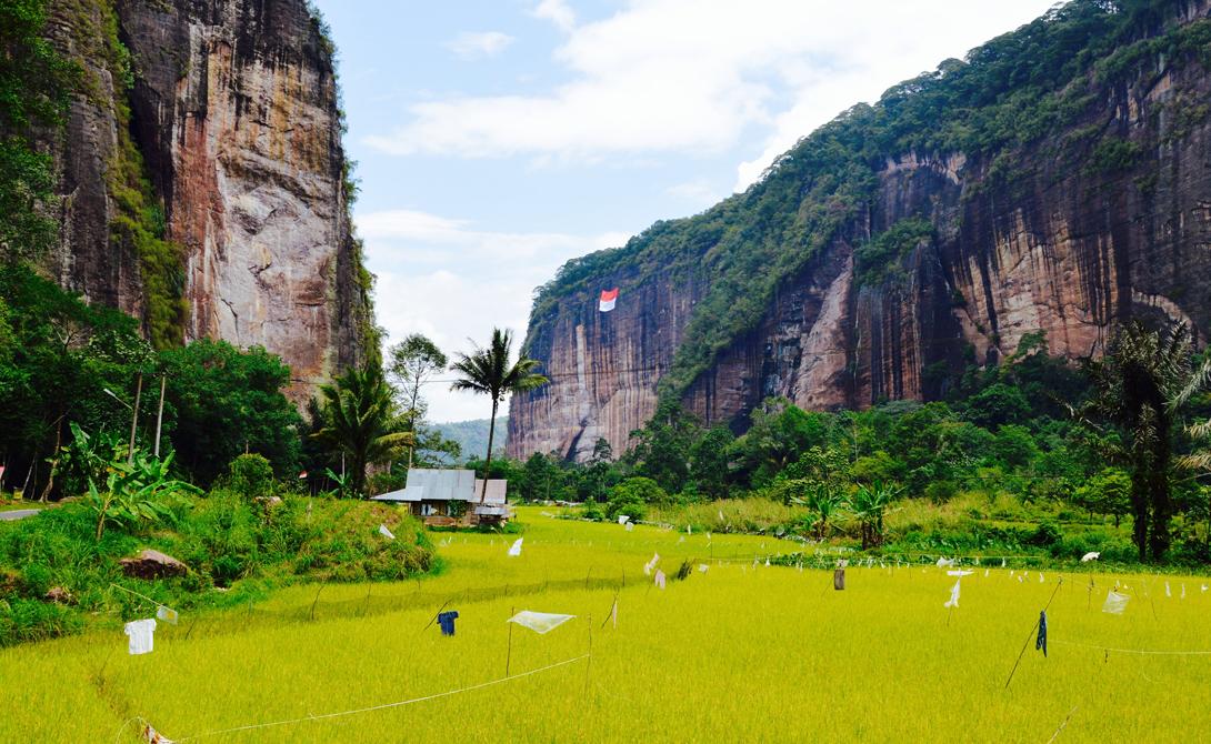 Харау Индонезия Расположенная в Западной Суматре, долина Харау поражает путешественников красивейшими природными пейзажами. Храбрый исследователь наверняка откроет здесь для себя много интересного: в долине есть покрытые лесами горы, неприступные скалы и даже укромные рисовые поля, возделываемые местными фермерами.