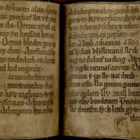 Мистические документы, которые ученые до сих пор не понимают