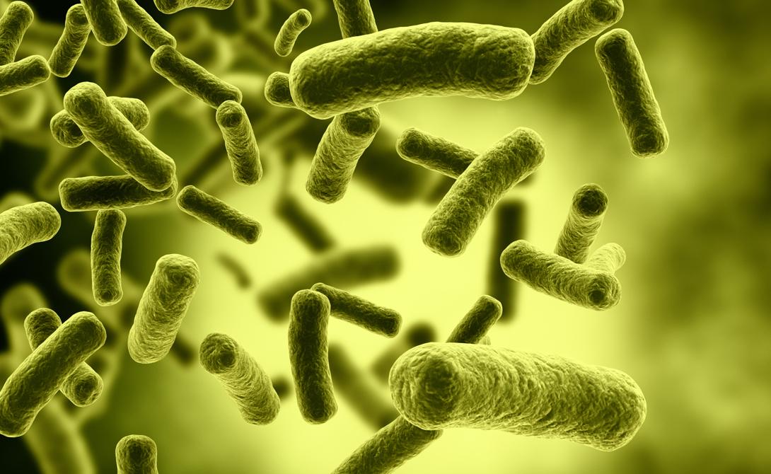 Последние полвека мы очень активно используем антибиотики для лечения самых разных заболеваний. Постоянное применение антибиотиков заставляет бактерии мутировать, приспосабливаясь к новым условиям. В мире появляются усовершенствованные виды бактерий, унаследовавших генетическую защиту от миллионов предыдущих поколений.