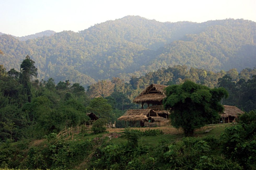Чыонгшон Каждые несколько лет во Вьетнаме обнаруживается новый вид животных. Все это благодаря густому горному лесу, расположенному на границе Лаоса. В Чыонгшон до сих пор сохранились коренные жители местности. Тигры, слоны, огромные вараны — человеку тут явно не очень рады.