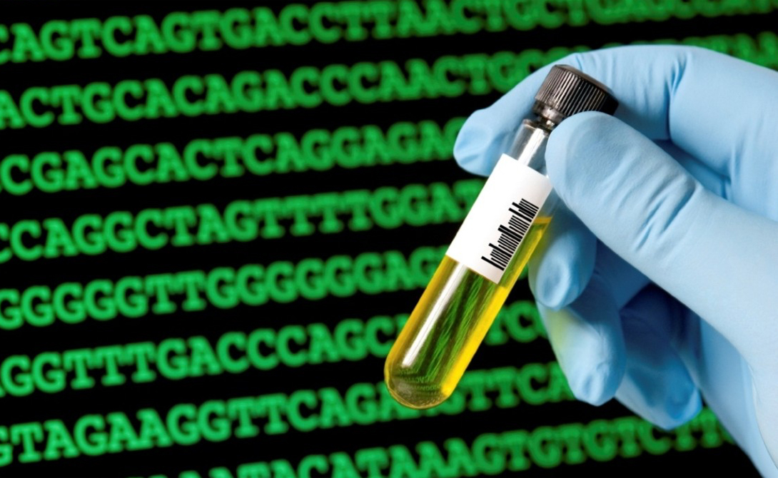Генная инженерия Благодаря достижениям в области молекулярной биологии, мы все больше понимаем, как эти паразиты могут изменить поведение носителя путем изменения экспрессии генов. Оказывается, некоторые виды манипуляторов способны влиять даже на строение ДНК хозяина.