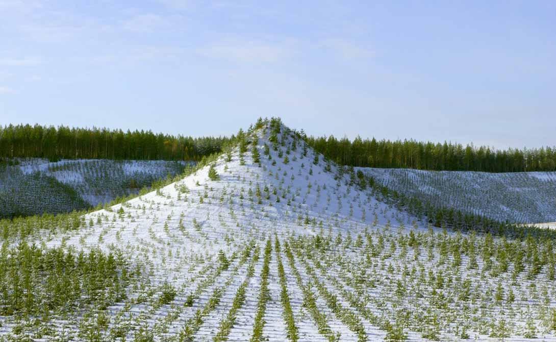 Древесная гора Юлёярви, Финляндия Слегка изогнутые ряды деревьев, покрывающие эту гору непроходимым лесом, были выращены искусственным образом. 11 000 деревьев формируют уникальный рисунок, отсылающий и к древним друидам, и к современным ландшафтным дизайнерам.