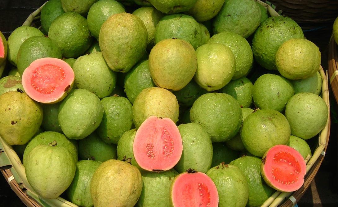 Гуава Чашка гуавы содержит 376 мг витамина С, что в четыре раза превышает рекомендованную суточную норму. Этот малоизвестный тропический фрукт богат и другим полезным элементом: ликопин-антиоксидант способствует профилактике рака простаты.