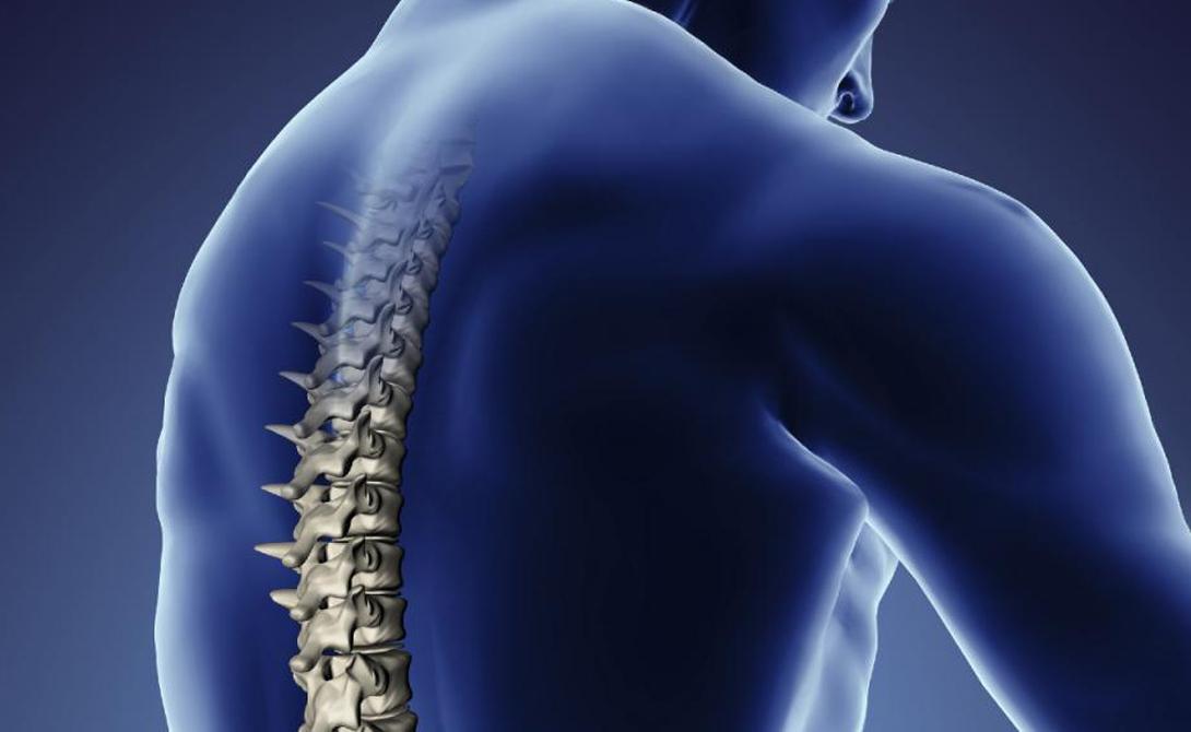 Куда обращаться Не теряйте времени в очередях к терапевту. Вам поможет невролог или нейрохирург — если есть выбор, стоит предпочесть вторую специальность. Постоянно практикующие нейрохирурги способны поставить диагноз точнее, поскольку сопоставляют снимки МРТ с реальной операционной картиной.