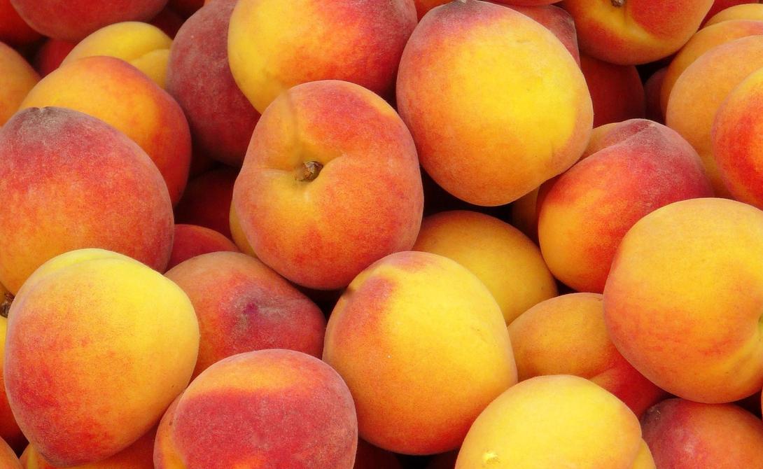 Персик Персики — еще один отличный продукт, способный обеспечить вам достаточное количество витамина С. Даже в консервированном виде они сохраняют практически все свои свойства — но лучше, конечно, выбирать свежие фрукты.