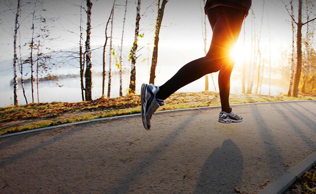Плавание Лучшее, что вы можете сделать для того, чтобы прийти в форму максимально быстро — заняться плаванием. Дело в том, что жировая прослойка выполняет теплоизолирующую функцию. Организм будет вынужден сжигать жир, только поддерживая в тепле внутренние органы. Добавить к этому активную работу — и скорость метаболизма возрастет многократно.
